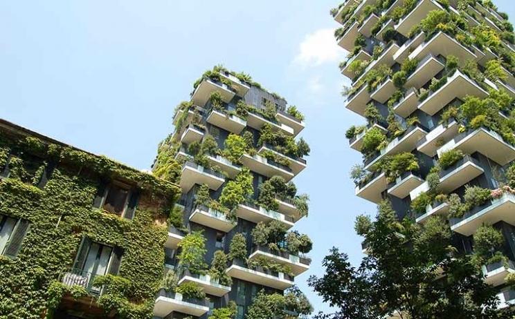 Convert your empty space into an urban garden