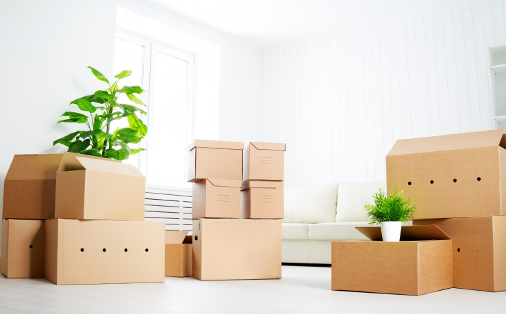 10 items for the ultimate moving house checklist