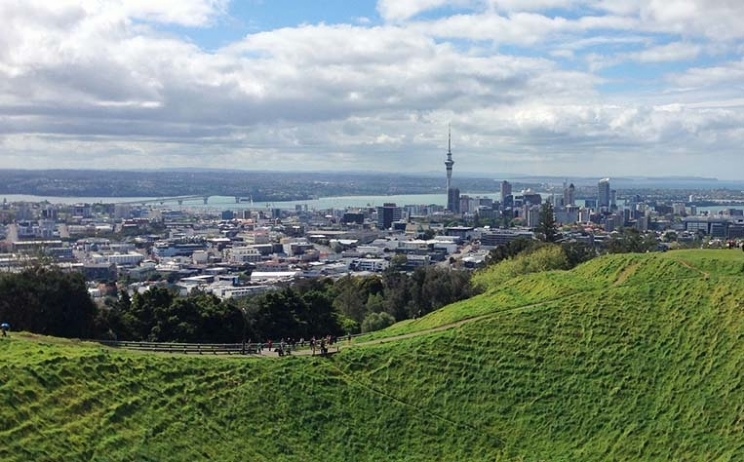 2019 Outlook for the Auckland market