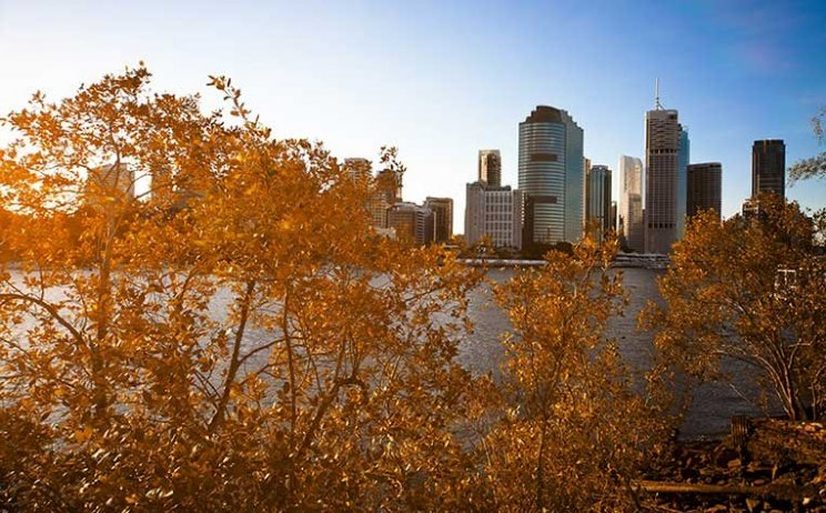 Brisbane B Grade Buildings – Burden or Blessing?