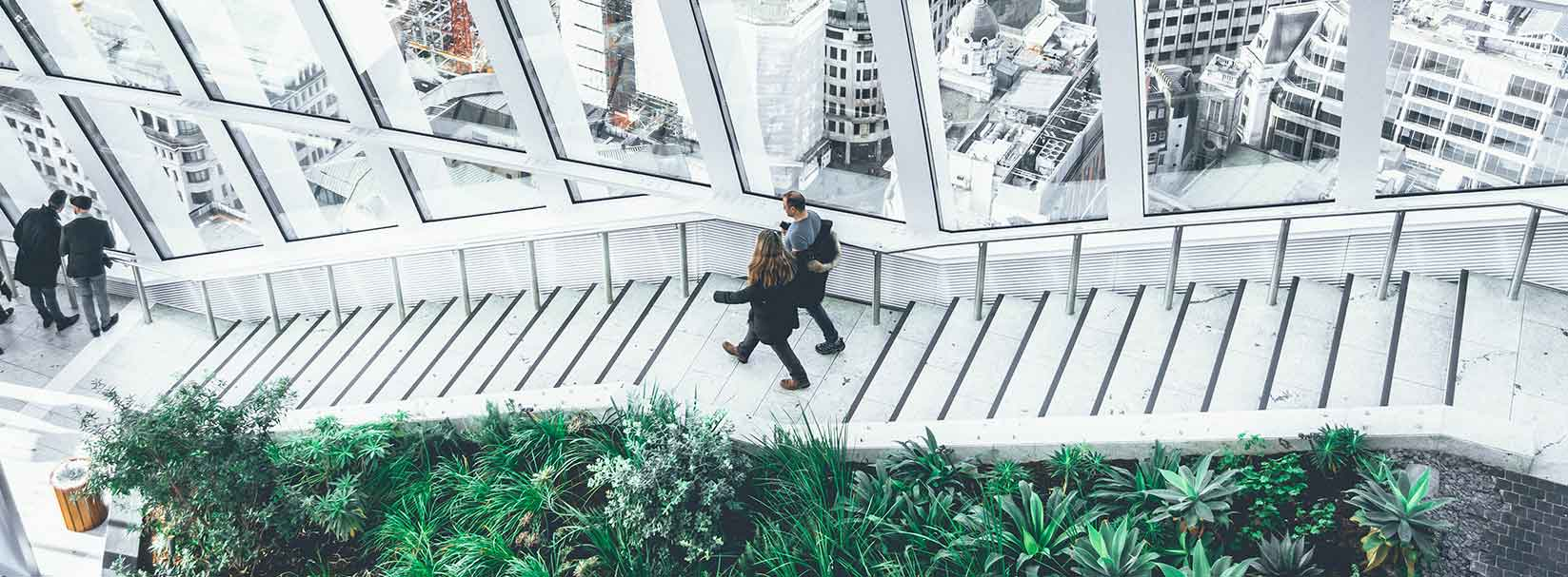 Where there's nature, there's well-being and productivity in the workplace