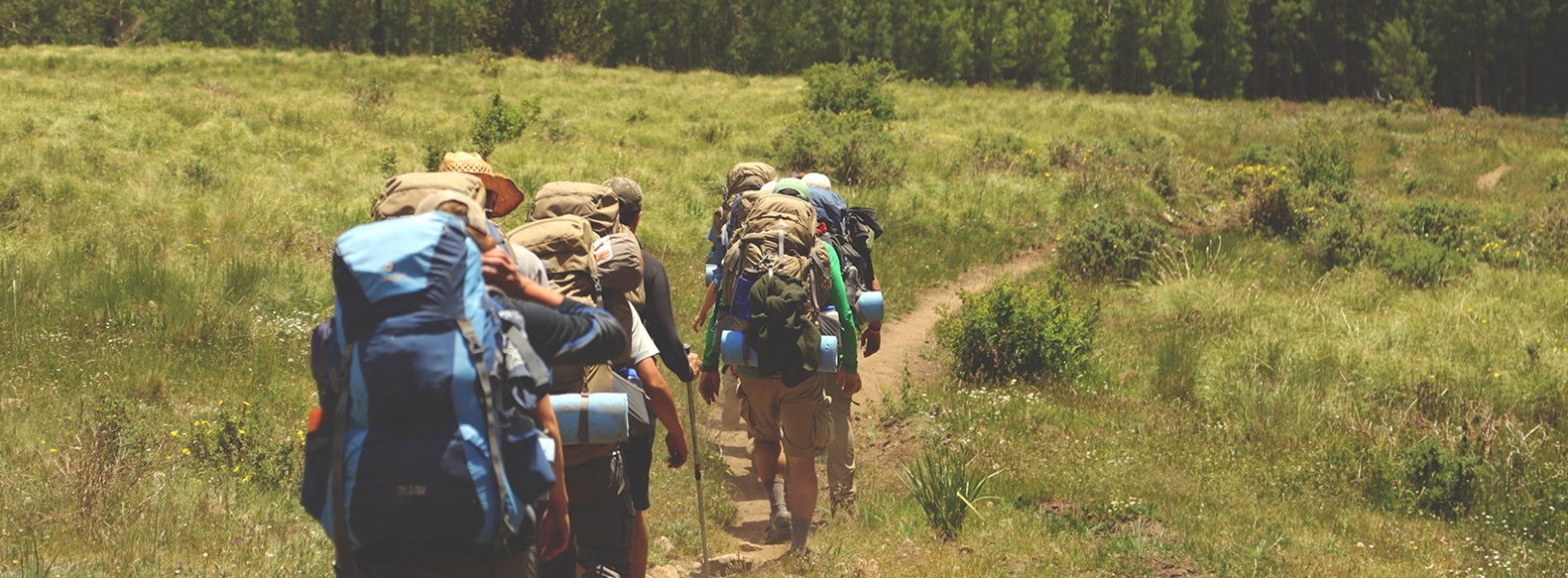 Are backpacker hostels the next hot topic for alternative investment?
